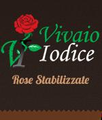 vivaio Napoli Vivaio Iodice