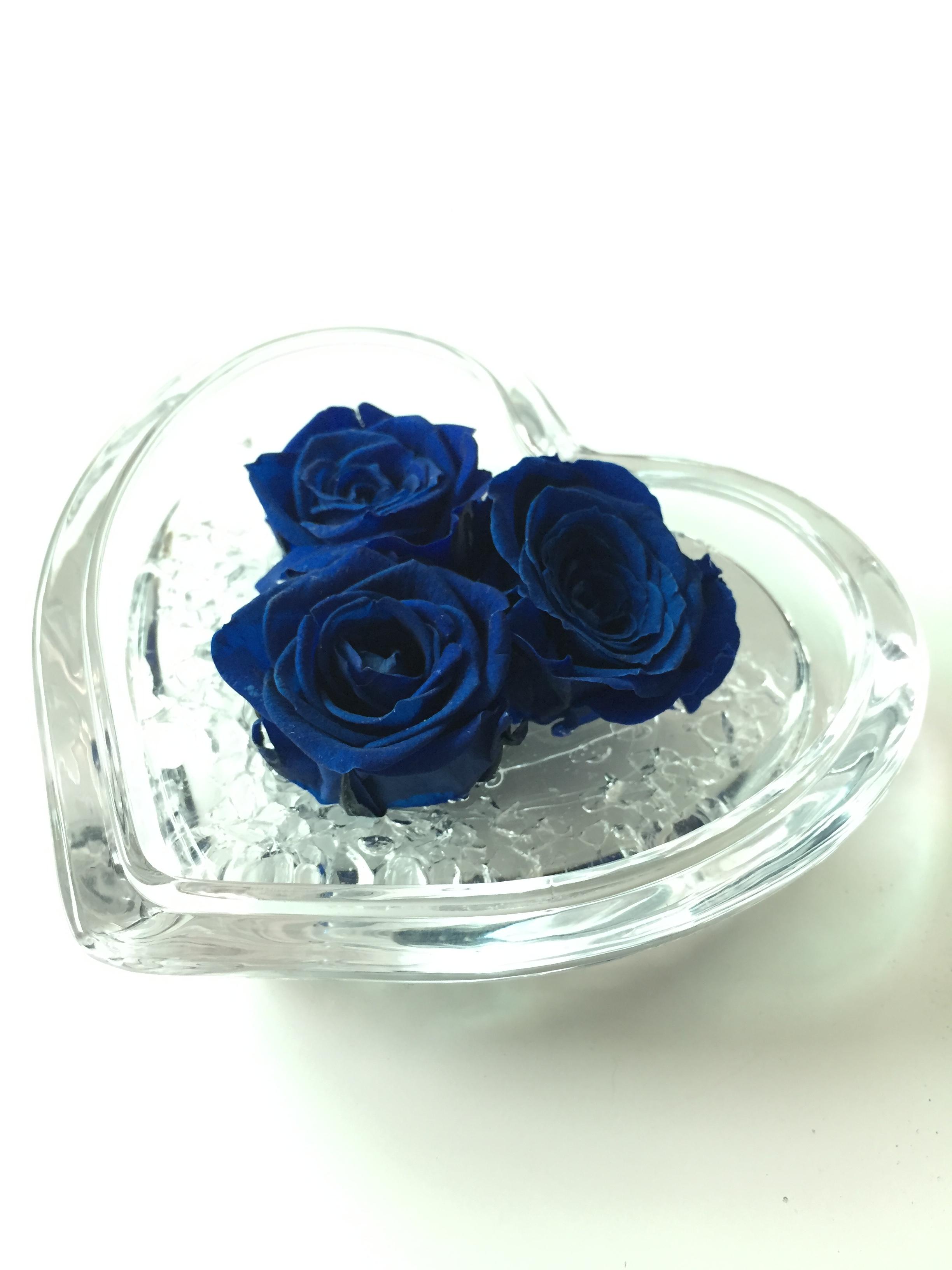 Cuore Di Rosa Blu 8cm Vivaio Iodice